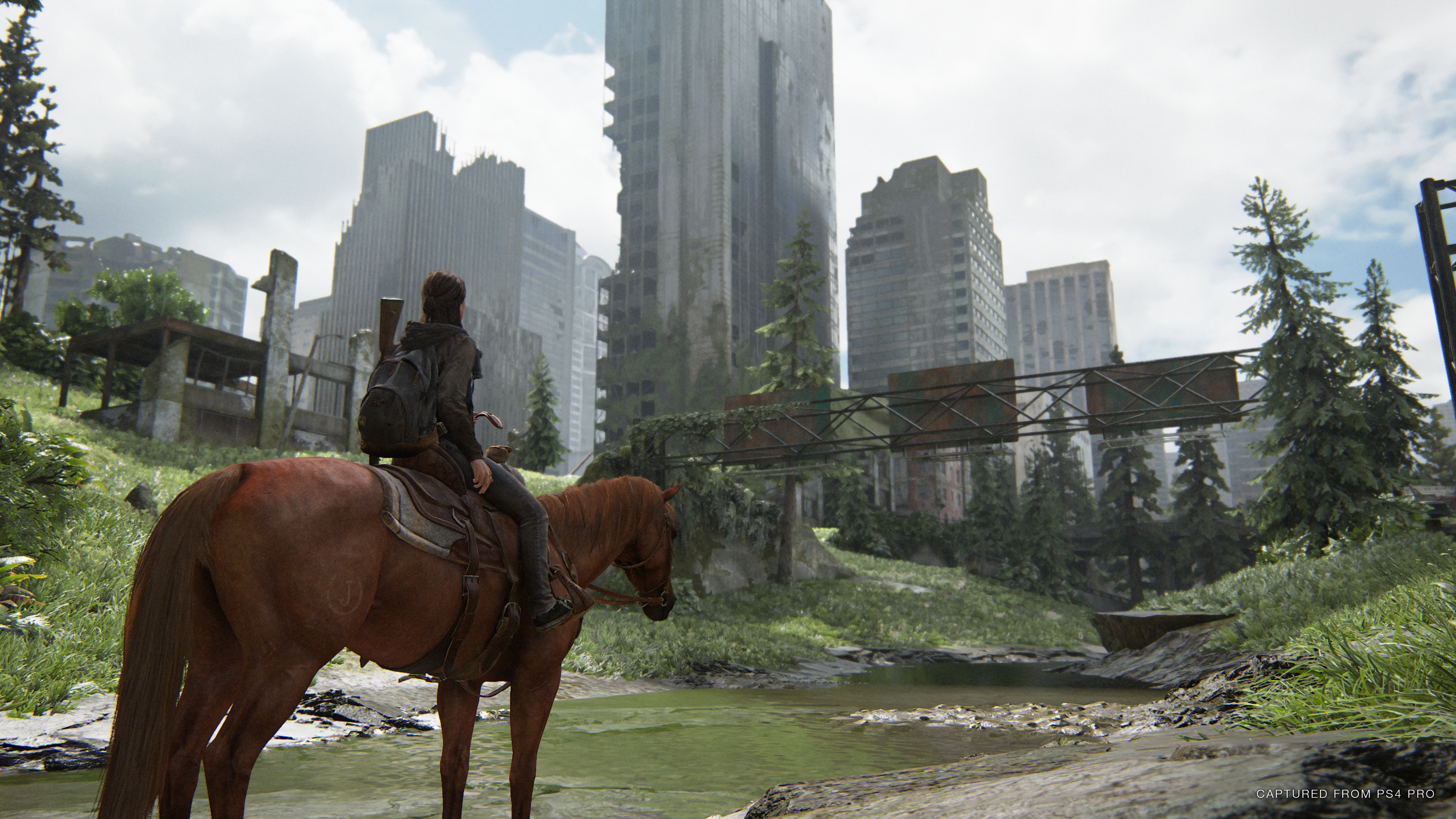 The Last of Us Part Two - Review   Progress Bar